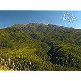 「御嶽山の森」