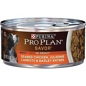 Purina Pro Plan Gravy Wet Dog Food, SAVOR Seared Chicken, Julienne Carrots & Barley Entree – (24) 5.5 oz. Cans