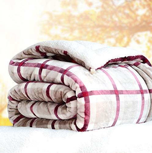 LCTCMT Dreilagige Plüschdecke Fluffy Wurfdecken Doppel- / Zweibettzimmer - Superweiche Fleece-Tagesdecke - Luxus-Flanell-Mikrofaser-Schlafsofa-Decken 5-10 Pfund (Farbe : C, größe : 180 * 200cm)