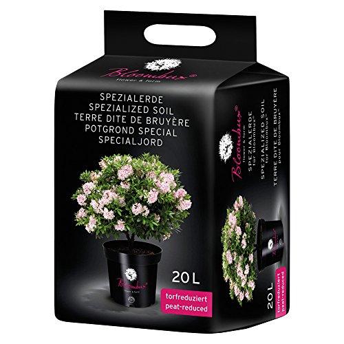 Bloombux Rhododendronerde 20 Liter – für Rhododendren, Buchsbaum, Heide, Blaubeeren und Azaleen