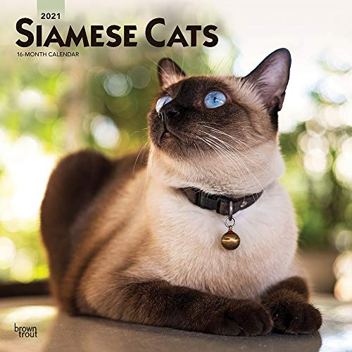 Siamese Cats 2021 Calendar