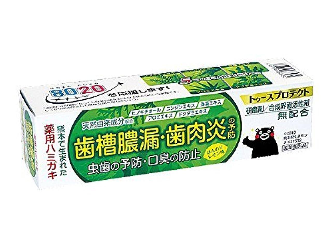 敏感なテレビレンチ【5個セット】 薬用ハミガキ トゥースプロテクト ほんのりレモン味 100g×5個セット