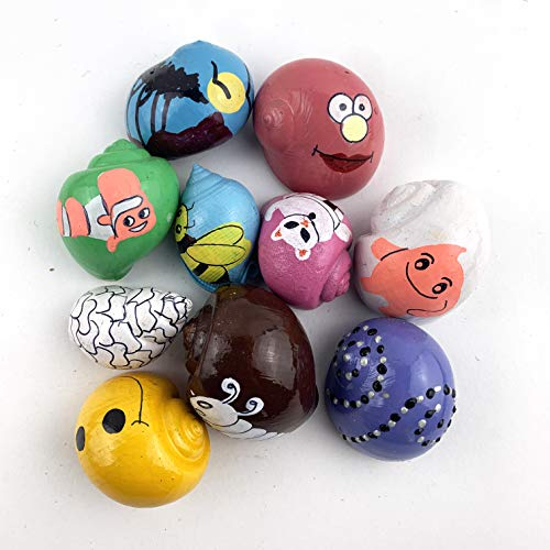 Worlds Assorted Painted Hermit Crab Shells for Home Decorations and DIY Crafts 10PC(Approx 2' Inch)