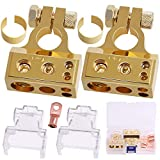 Rustark 1 Pair 0/4/8/10 Gauge AWG Positive Negative Car Battery Terminal Connectors with 2 Clear Covers and Shims for Car Auto Caravan Marine Boat Motorhome (Gold)