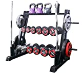 KINGC 3 Tier Multifunction Dumbbell Rack Home Workout Gym Kettlebells, and Weight Plates Storage...