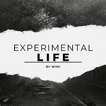 Experiment Life