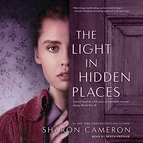 Light in Hidden Places Titelbild