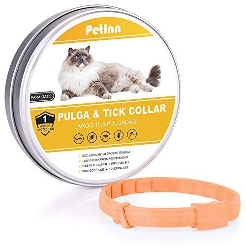 PetInn Collar de Pulgas y Garrapatas para Gato,Acción Prolongada 10 Meses de Protección y Prevención contra Pulgas Garrapatas,Piojos,Talla Única para Todos,Ajustable, Impermeable.