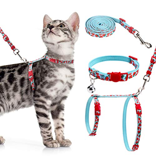 PAWCHIE Adjustable Cat Harness with Leash Set Fruit Pattern Cat Lovely Hanress Light Weight H-Shape Strawberry Pattern Harness for Adult Cat and Small Puppy Wearing
