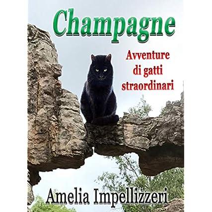 Champagne. Avventure di gatti straordinari. Libro avventuroso con protagonista un gatto coraggioso dai magici poteri terapeutici