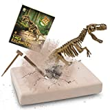 JamBer Dig Up Dinosaurs Set, Dinosaur Fossil Digging kit for Kids, Science Educational Realistic Toys for Boys, Girls (T-REX)