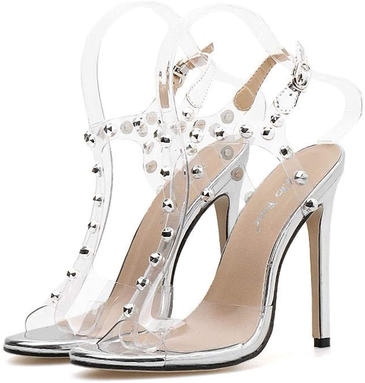 Transparent Stiletto High Heel Sandals Rivets Women's Sandals (color   Silver, Size   5.5 US)