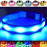 LED-Hundehalsband, aufladbar per USB-Anschluss, für gute Sichtbarkeit und mehr Sicherheit im Dunkeln, in 4 Farben und 3 Größen verfügbar, Batterien sind nicht im Lieferumfang enthalten