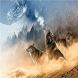 Pintura por Números,Lobo mirando al cielo animal,DIY Pintura al óleo Colorido Pintar Kit de,Lienzo Preimpreso de con Pinceles y Pigmento Acrílico (16 X 20 Pulgadas,Sin Marco)