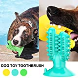 SerDa-Run Hundekauspielzeug zur Zahnpflege