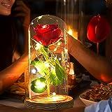 Rose, Night Light, Rose Light, Best Gift for Girl Friend, Birthday Gifts, Glass Rose, Rose Light , Room Decor,Valentine's Day Gifts,, Never Fade Rose