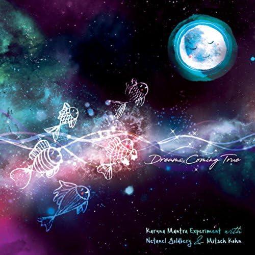 Karuna Mantra Experiment