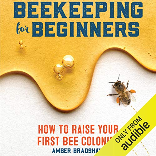 Beekeeping for Beginners Titelbild