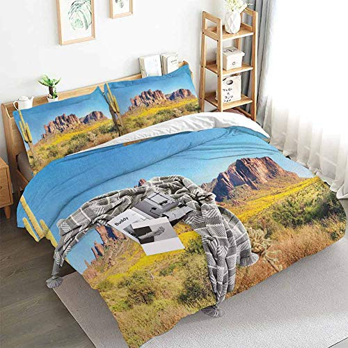 Aishare Store Saguaro Duvet Cover Set,Blooming Brittlebush Superstition Wilderness by The Mountain Phoenix View,Decorative 3 Piece Bedding Set with 2 Pillow Shams,Queen(90'x90') Orange and Brown