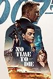 Lionbeen No Time to Die - Movie Poster - Filmplaka