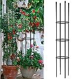 WIVAYE Cage de support pour pots de fleurs, anneau de support rond assemblé, cage de tomate, pilier, pot de fleurs grimpant treillis pour plantes grimpantes verticales en pot