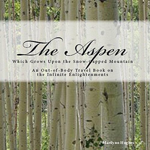 The Aspen audiobook cover art