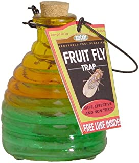 BioCare Decorative Glass Insect Trap, Large, Color May Vary