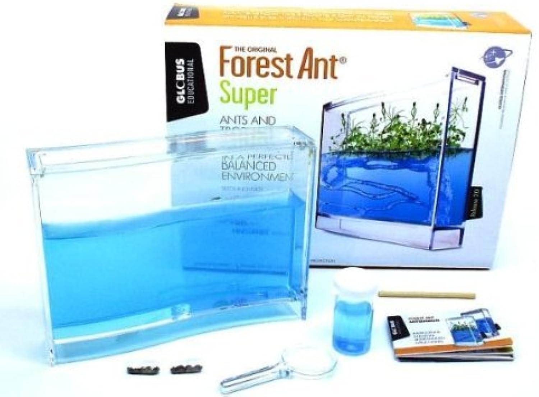 Globus Super Forest Educational Kit by Globus