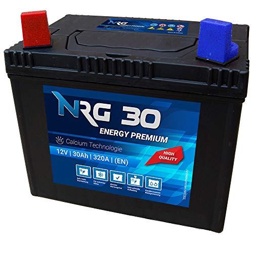 NRG Premium Batterie 30Ah 12V Rasentraktor Aufsitzmäher Plus Pol Links Fleurelle MTD Partner John Deere Agroma Ransomes Westwood