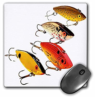 3dRose 8 x 8 x 0.25 Inches Fishing Lures Mouse Pad (mp_3981_1) by 3D Rose (Home Improvement)