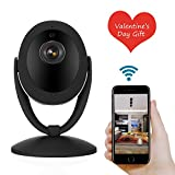 NEXGADGET 1080P Wireless Security Camera Home Camera Pan Tilt with Two-Way Audio, Night Vision, Baby Pet Monitor Nanny Cam, Motion Detection P2P WiFi Network Camera