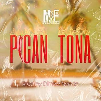 Pican Tona