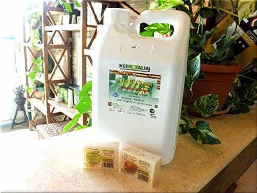 Olio di Neem solubile in acqua da 5 lt. + 2 saponi al neem da 100 gr