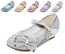 Silvery/Ce Heels Mary Jane Princess Flower Girl Shoes