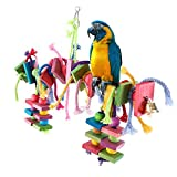 LITTLEGRASS Bird Chew Toy with Bells Knots Block Parrot Chewing Toys Natural Colorful Wooden Cage Perch Accessories Hanging Decorative for Parrots African Grey Cockatiels Parakeets Conures Lovebirds