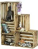 LAUBLUST 5er Set Vintage Holzkisten - Kisten in 2 Größen, 50x40x30cm / 40x30x25cm, Geflammt, Unbenutzt | Möbel-Kiste | Wein-Kiste | Obst-Kiste | Apfel-Kiste | Deko-Kiste aus Holz
