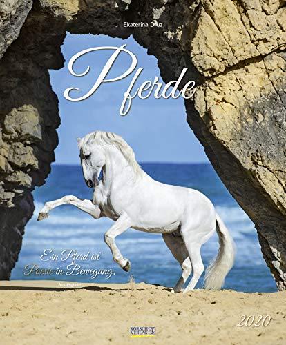Pferde 2020: Großer Wandkalender. Foto-Kunstkalender - Pferdekalender mit literarischen Zitaten. 55 x 45,5 cm