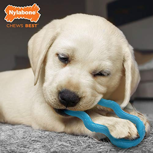 Product Image 2: Nylabone Puppy Chew Toy
