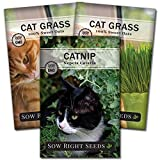 Sow Right Seeds - Catnip and Cat Grass Seed Collection for Planting Indoors or Outdoors, Includes The Popular herb Seed Catnip and Cat Grass (100% Sweet Oat Grass), Non-GMO Heirloom Seed