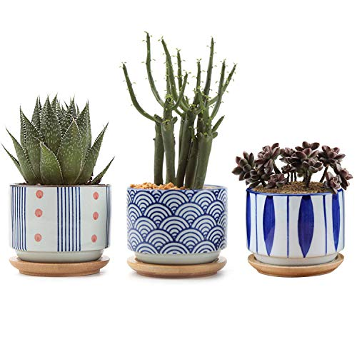 T4U 7CM Ceramic Japanese Style Succulent Pot with Free Bamboo Tray Pack of 3, Cactus Planter Container Home and Office Windowsill Desktop Bonsai Pots Decoration for Gardener Christmas Wedding