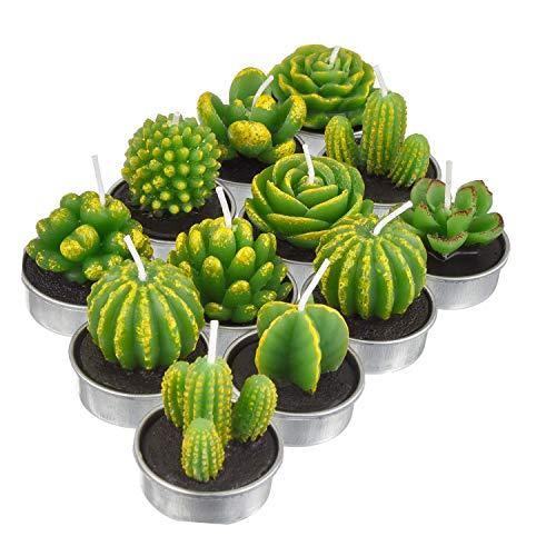 Lvcky 12 Stück Kaktus Teelichter Kerzen Handgemachte Zarte Sukkulenten Kaktus Kerzen für Party Hochzeit Spa Home Dekoration Geschenke