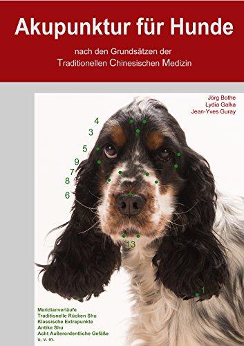 Akupunktur für Hunde nach den Grundsätzen der Traditionellen Chinesischen Medizin