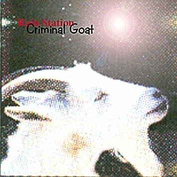 Criminal Goat