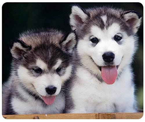 Siberian Husky Puppies Customized Rectangle Mousepad, Mouse Pad 30x25 cm