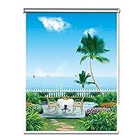 ローラーブラインド ブラックアウトローラーブラインド用のWindows/バルコニー/キッチン、昼と夜のブラインドカーテン付きサイドプル、ワイド80分の60/90/120分の100/140センチメートル (Size : 60×180cm)