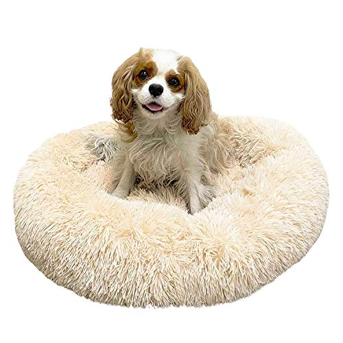 Alpha Paw Cozy Calming Dog Bed for Small Dogs, Anti Anxiety, Comfy, Fluffy, Ultra Soft, Round Pillow Donut Pet Bed for Dogs (Medium 26', Beige)
