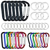 20 Pack Carabiners Clips with Keychain D Ring Caribeaner Clip Hook for Backpack Water bottle Key Home RV Outdoor Small Item (3 Style)