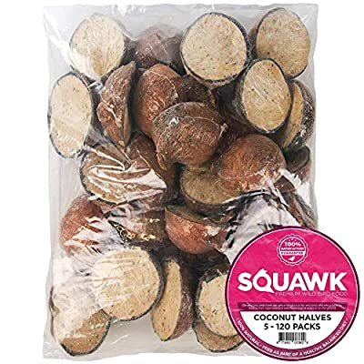 SQUAWK Suet Filled Coconut Halves | Premium Wild Bird Food | Protein-Rich, High Energy Feed | Sunflower Seeds and Cereal Oat | Healthy & Strong Development for Birds | Year-Round Feeding (10 Pack) by SQUAWK