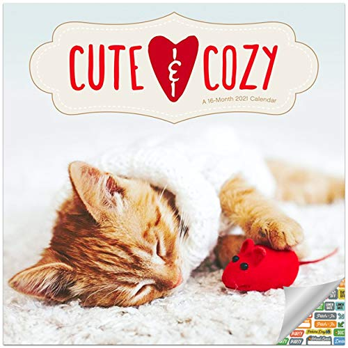 Kittens and Puppies in Sweaters Calendar 2021 Set - Deluxe 2021 Cute and Cozy Wall Calendar with Over 100 Calendar Stickers (Baby Cats and Dogs Gifts)