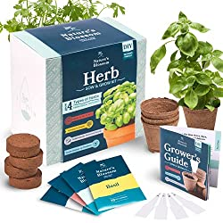 Herb Garden Seed Starter Kit by Nature's Blossom - This simple but comprehensive indoor herb garden kit has everything you need to get started